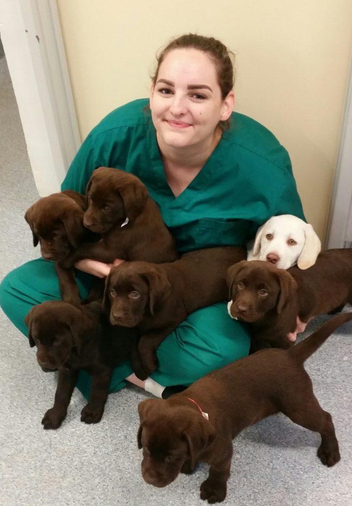 Abby Salter Vet Nurse Kwinana Vet Hospital