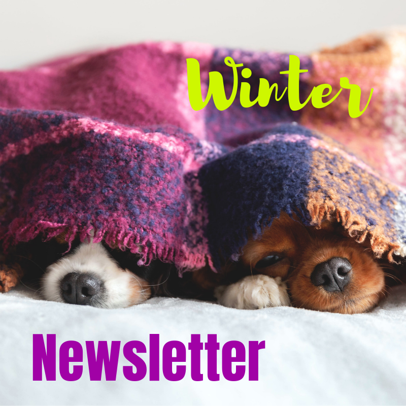 Kwinana Vet Winter Newsletter 2019