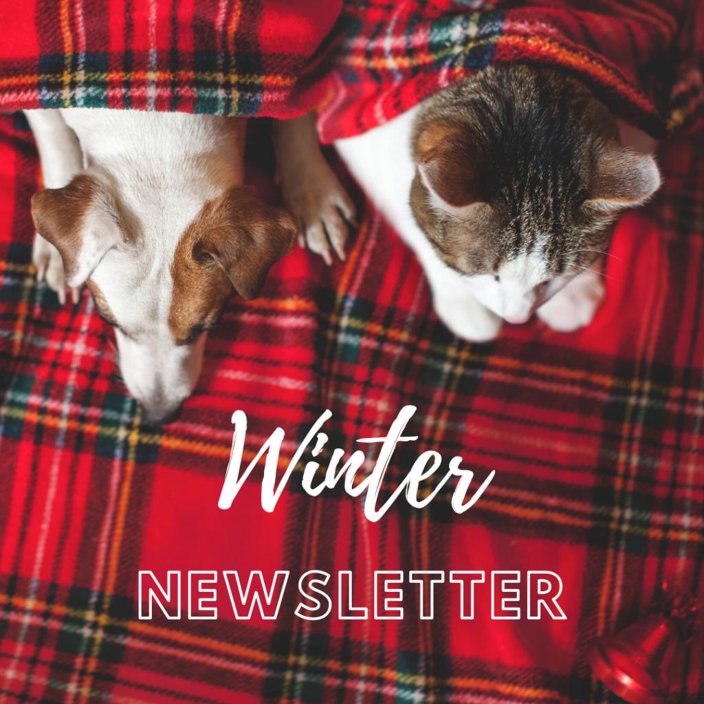 Kwinana Vet Winter Newsletter